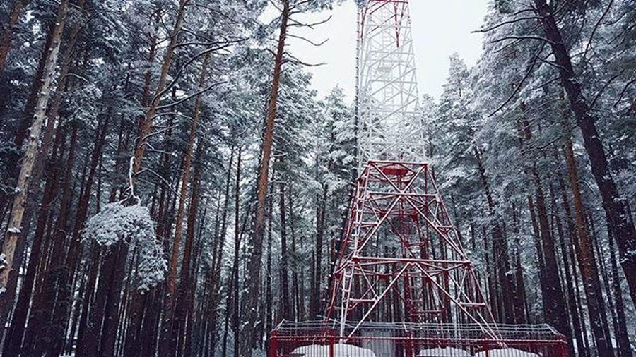Сегодня очень круто в лесу,кроны деревьев еще в снегу, вероятно заключительный день в сезоне, потому как прогноз с завтрашнего дня на стабильный плюс☁ _______________________________ Mkexplore Globalcapture Jaw_dropping_shots TheCreatorClass Agameoftones Main_vision Lifeofadventure Artofvisuals Exklusive_shot Moodygrams Mobilemag Gearednomad Visualsoflife Createcommune Bevisuallyinspired Troughthepines Createexploretakeover Itsamazingoutthere ExploreEverything Instagram Ig_exquisite CreateExplore Igersmood снятонаgalaxy Forestx