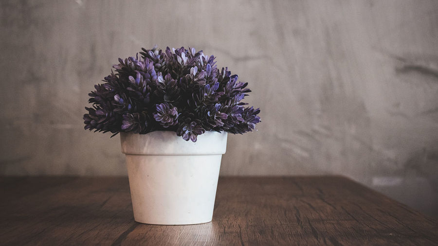 Close-up of purple flower vase on table