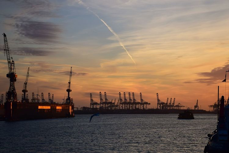 Cranes at commercial dock against sky during sunset
