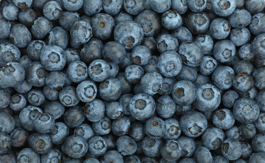 Full frame shot of blueberry fruits