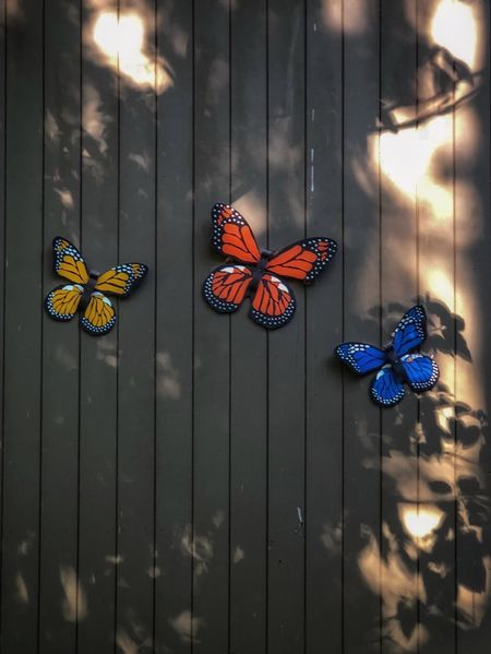 Fake butterflies are the first I've seen this season. No People Art And Craft Butterfly - Insect Decoration Animal Animal Representation Animal Wing Insect Nature Christmas Decoration Outdoors Representation Animal Themes Invertebrate Wall - Building Feature Craft Wood - Material Floral Pattern Hanging