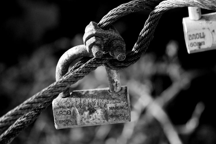 Close-Up Of Padlock Hanging On Steel Cable