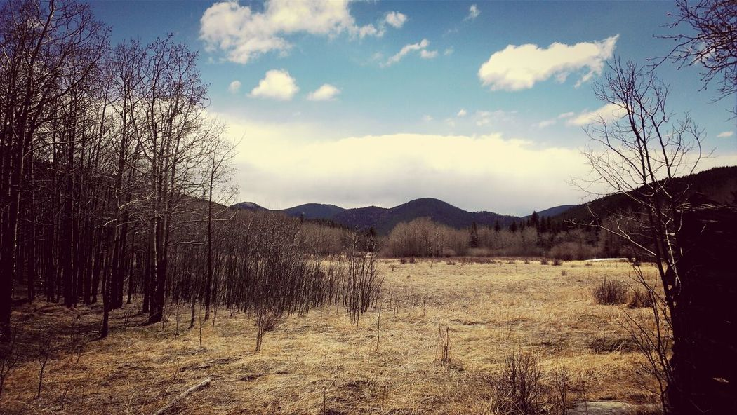scenery from golden gate canyon park, Colorado Taking Photos Colorado Scenery Photography