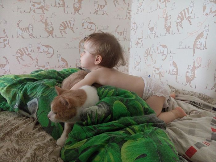 Shirtless girl playing with cat on bed at home