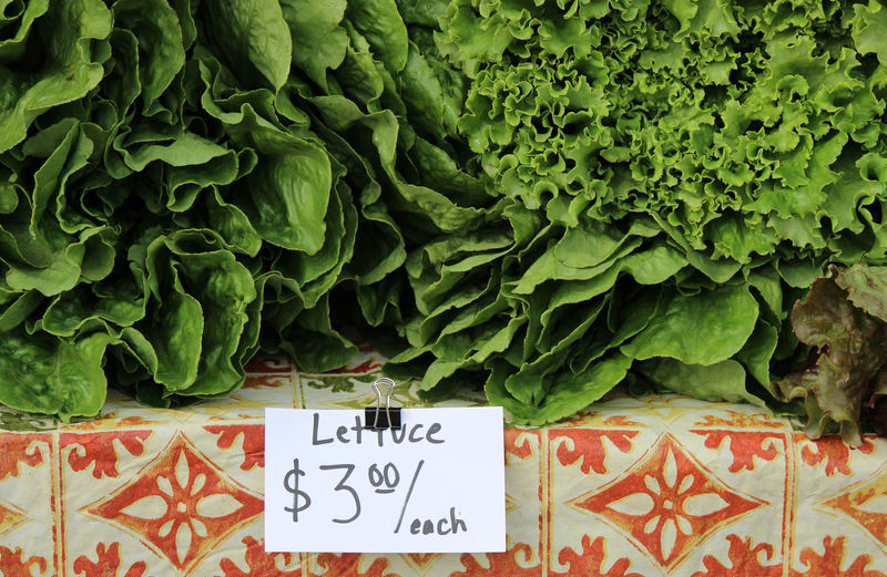 Close-up of sign board by lettuce for sale at market stall