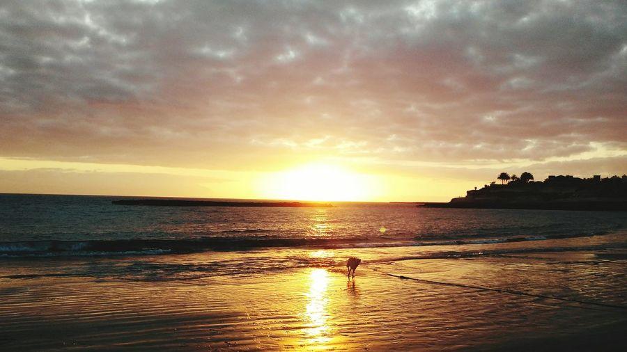 Taking Photos Check This Out Enjoying Life Taking Photos Enjoying The Sun Sandy Beach Sunset