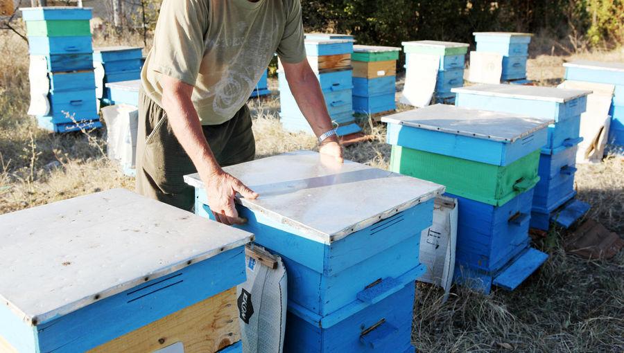 Preparing honey bees for winter