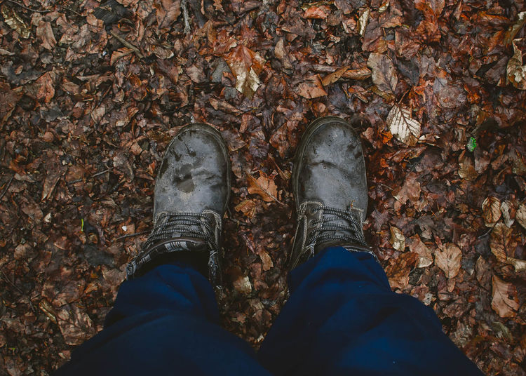 Low section of man wearing shoes standing on autumn leaves