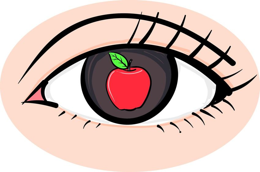 An Apple Of My Eye Creativity Idiom Idioms Idioms Collection Illustration Phrase Of The Day Phraseoftheweek