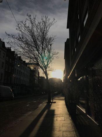 Sunrise 😚 Early Morning Sun ☀ Oftob солнце восход