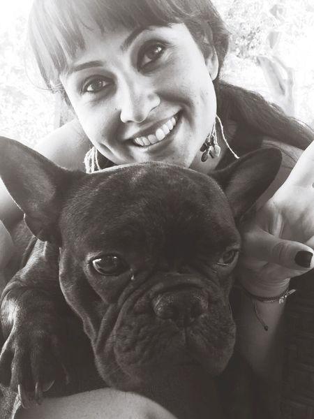 Frenchbulldog Walter Dog Love