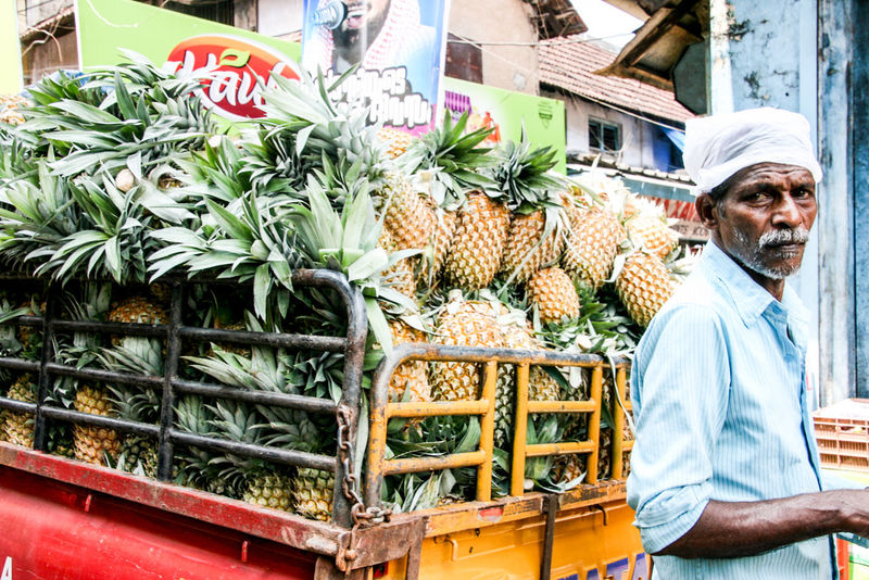 Streetphotography Ananas Fresh Fruits Freshness Fruits Healthy Food Healty India Indian Indian Culture  Indian Style Market Market Stall Men At Work  Pineapple Selling Streetart Streetphotography Travel The Street Photographer - 2017 EyeEm Awards The Portraitist - 2017 EyeEm Awards Sommergefühle Connected By Travel An Eye For Travel This Is Aging