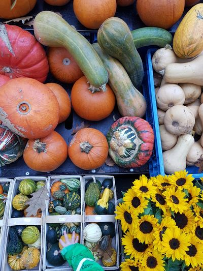 Fresh food For Sale Freshness Variation Market Outdoors Choice Healthy Eating Food Nature Close-up Holding Pumpkins Colored Beauty In Nature Autumn The Week On EyeEm EyeEm Best Shots Minimalism Vegetable Ready-to-eat Human Body Part Large Group Of Objects Human Hand Fitness Clothing