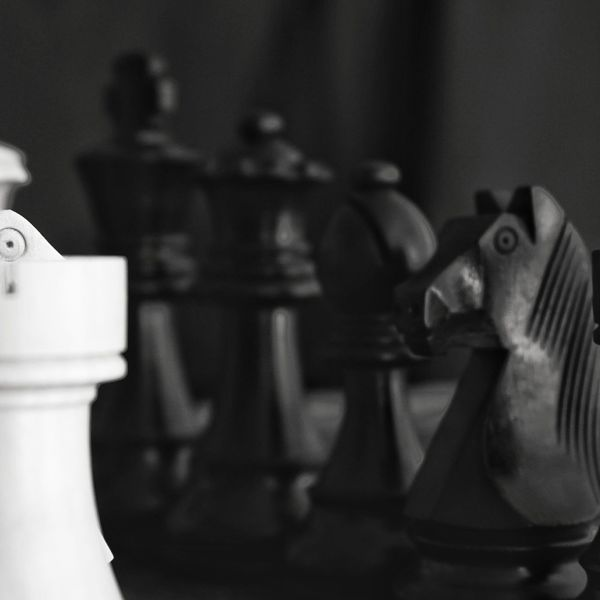Still cold Indoors  Close-up Blackandwhite Photography Blackandwhite No People Knight - Chess Piece Chess Board Chess Piece Chess Strategy SonyA500 EyeEmNewHere