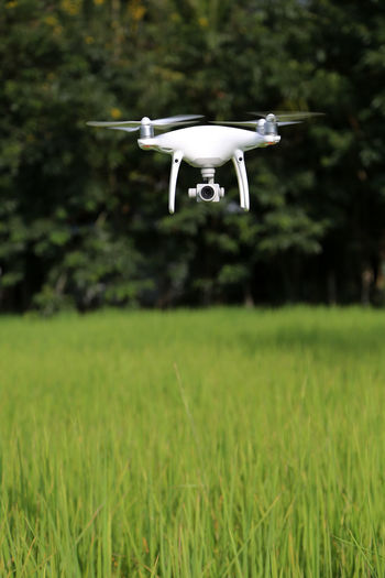 Airplane flying over grassy field