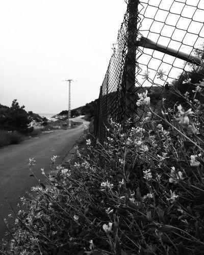 Road to the sea Blackandwhite Photography Blackandwhitephotography Cartagenaspain Enjoying Life Black And White Photography Monochromatic Blackandwhite Monochrome Black&white Black & White Monochrome_life