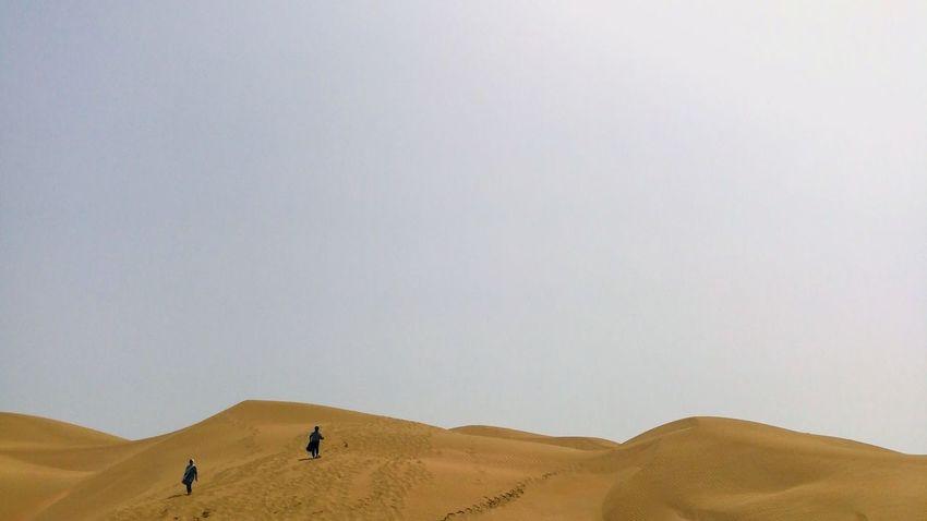 EyeEm Best Shots EyeEmNewHere EyeEm Selects Sand Dune Desert Arid Climate Sand Cheetah Adventure Clear Sky Heat - Temperature Camel Sky