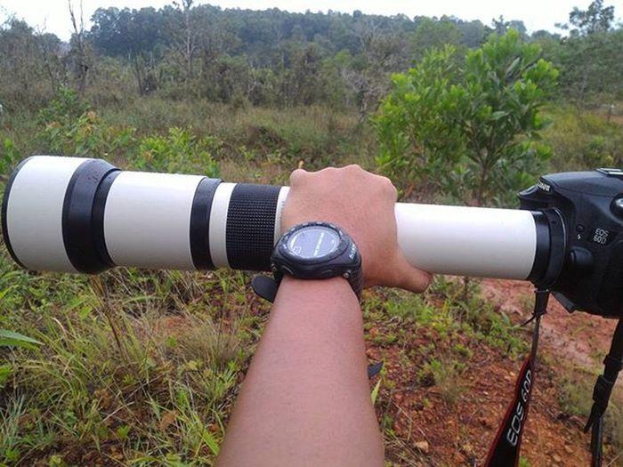 Apa yang bisa didapatkan hari ini Documentary Dailylife BintanBirdProject Bintan  Samyang Manfroto 6501300mm
