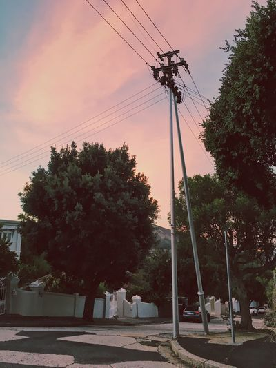 Electricity pylon with pink sunset. Built Structure Cable Cloud - Sky Connection Day Electricity  Electricity Pylon Fuel And Power Generation Low Angle View Nature No People Outdoors Pink Sky Power Line  Power Supply Sky Sunset Technology Telephone Line Tree