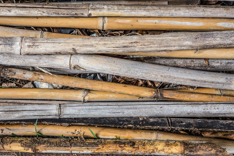 Bamboo pile texture background Pile Of Wood Abundance Backgrounds Bamboo Close-up Day Deforestation Firewood Food And Drink Full Frame Large Group Of Objects Log Lumber Industry Nature No People Outdoors Pattern Pile Stack Textured  Timber Wood Wood - Material