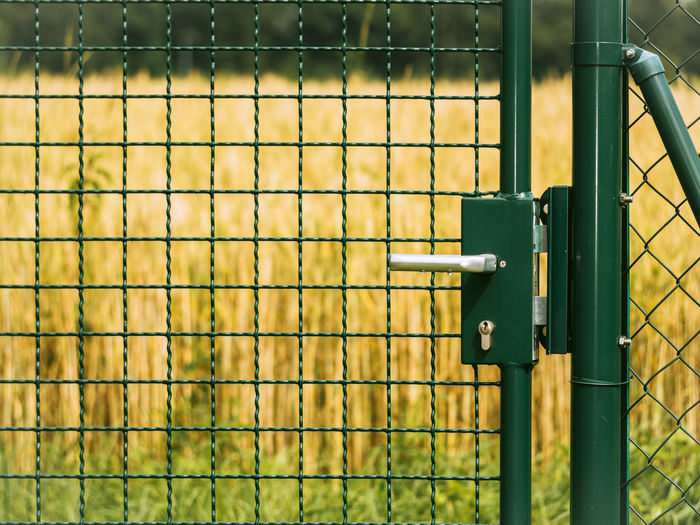 Close-up of metal fence by gate