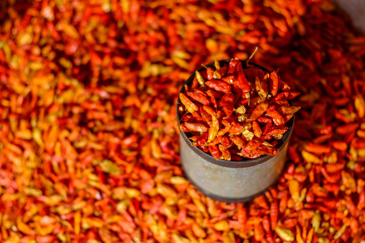 Dried red chili or chilli cayenne pepper. Blur background Food And Drink Close-up Red Food Spice Chili Pepper Plant Part Red Chili Pepper Dry Large Group Of Objects No People High Angle View Cooking Asian  Closeup Color Cayenne Chillies Blurred Background Cuisine Flavoring Healthy Chilli Cayenne