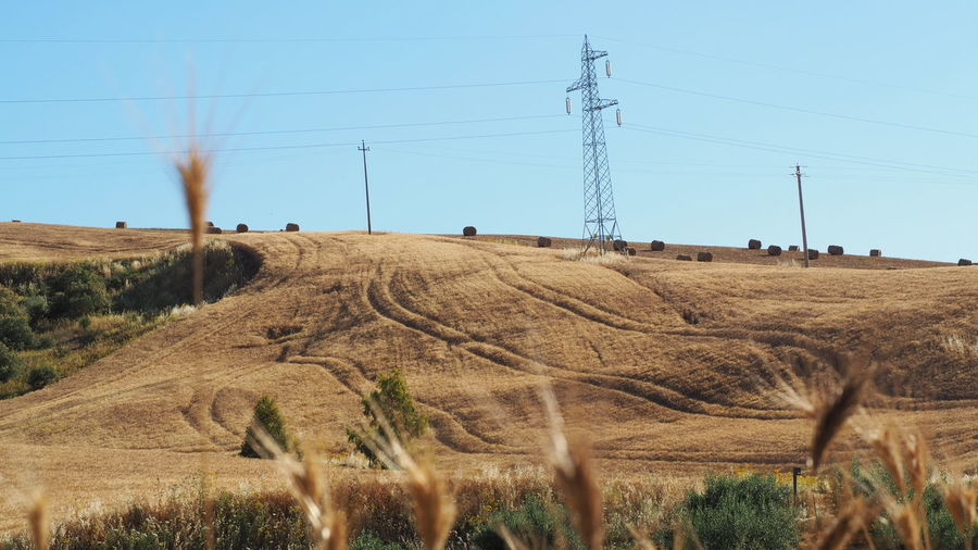 EyeEm Selects Telephone Line Electricity Pylon Rural Scene Electricity  Agriculture Clear Sky Cable Field Power Line  Sky