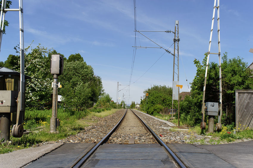 tracks Norway Osebakken Built Structure Cable Connection Day Diminishing Perspective Direction Electricity  Electricity Pylon Nature No People Outdoors Plant Power Supply Rail Transportation Railroad Track Sky Technology The Way Forward Track Transportation Tree vanishing point
