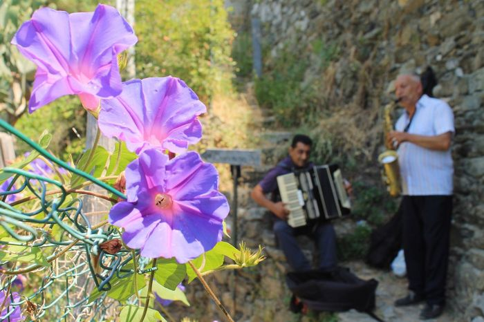 Happiness The Power Of Flowers Musician Plant Flower Flowering Plant Men Growth Freshness Nature Beauty In Nature Fragility Outdoors Petal Focus On Foreground
