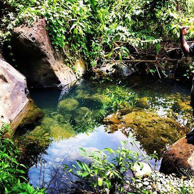 Pool Grenada Instabelasfotos Instagramhub Islandlivity Islandlife Caribbean WestIndies River Cool