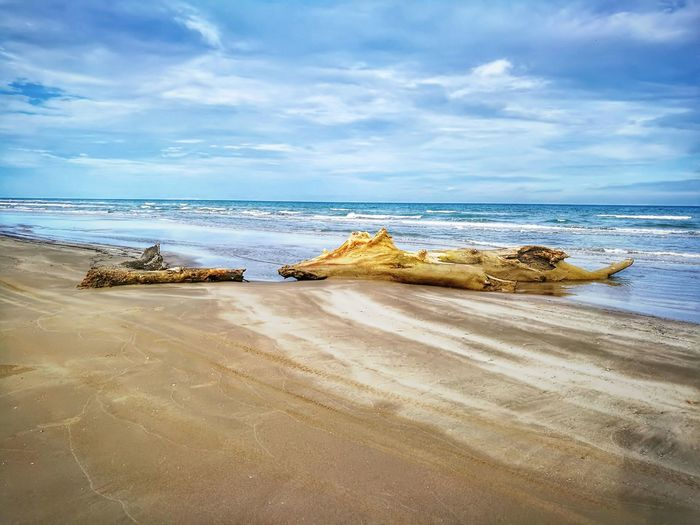 Beach Sea Horizon Over Water Sand Scenics Landscape Water Low Tide Sky Nature Cloud - Sky Rock - Object Outdoors Beauty In Nature Tranquility Day No People Travel Destinations Vacations Wave Tamiahua Varacruz