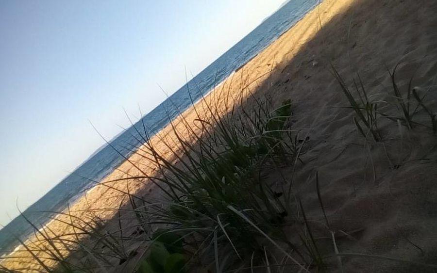 beach Sand Dune Beach Desert Sand Agriculture Sky Shore Tide Coast Ocean