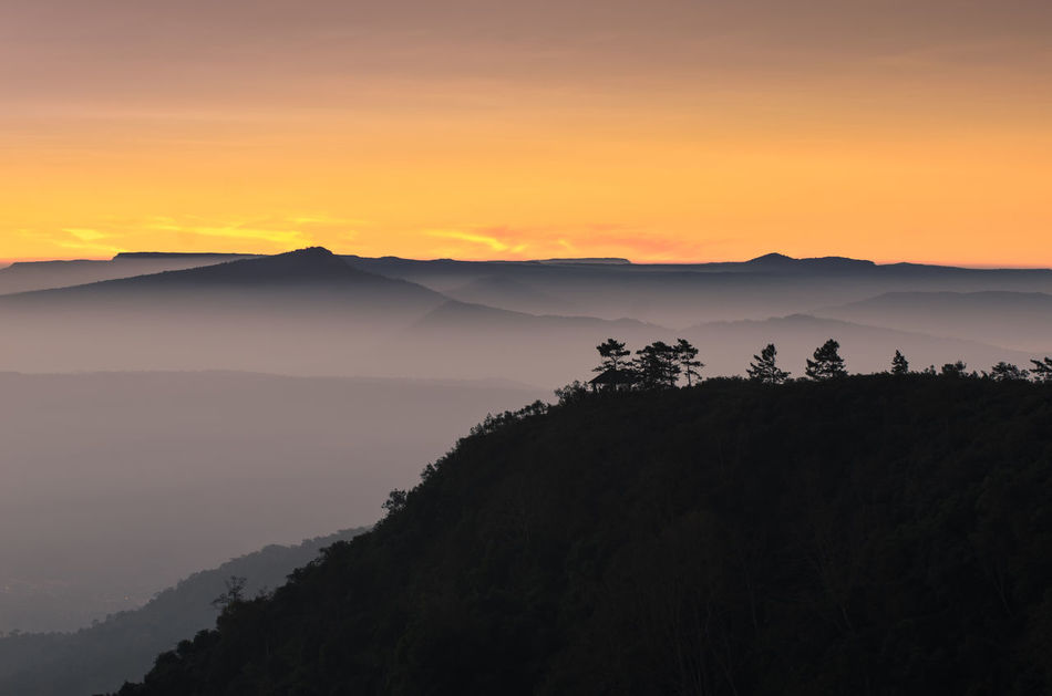 Sunset View Point at Phu Ruea National Park Cloud Loei National Park Nature Phu Ruea Silhouette Thailand Travel Wonderful Beauty In Nature Day Focus On Foreground Forest Landscape Mountain Nature No People Outdoors Ruea Scenics Sky Sunrise Sunset Tranquil Scene Tranquility