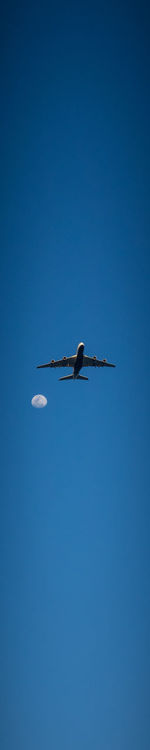 Fly me to the Moon Air Airplane Blue Clear Sky Day Fly Me To The Moon Flying Low Angle View Moon Moonlight Plane Sky Transportation Wings Go Higher