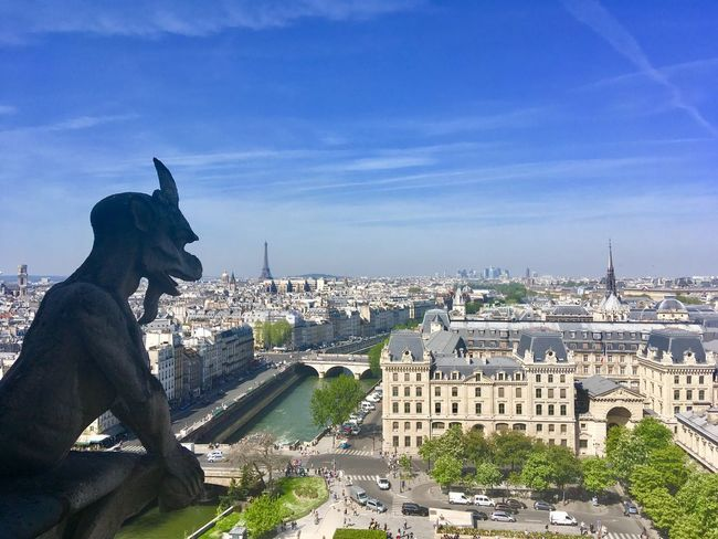 Unique Perspectives Gargoyle Paris City City Life River View Eiffel Tower River Architecture Built Structure Building Exterior City Sky Cityscape Building Nature Travel Destinations Day Cloud - Sky Travel Tourism Sculpture Outdoors
