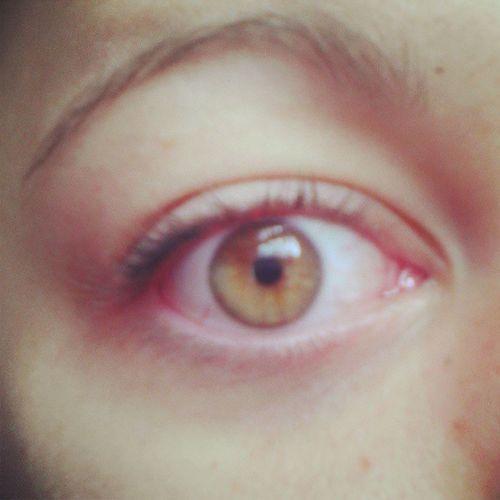 October 6, 2013: My eye(: Photoadaychallenge HoneyBrownEyes Love Pretty NoMakeUp