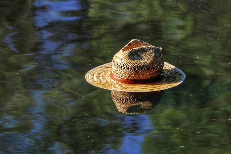 Close-up of hat floating on water