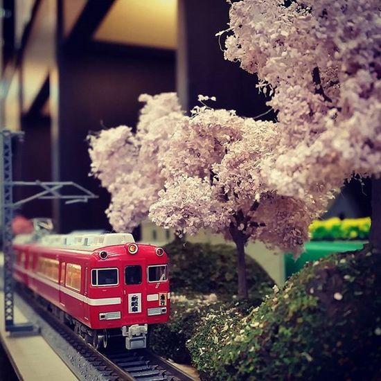 当店ジオラマ、新たに牧場前の土手にも桜が咲きました。