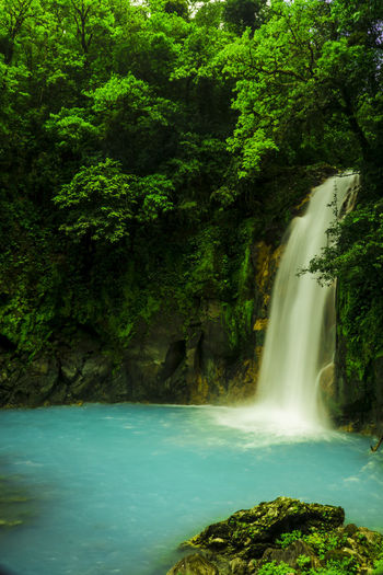 Costa Rica Flowing Flowing Water Nature Plant Rock Tree Beauty In Nature Blurred Motion Environment Falling Water Forest Landscape Long Exposure Motion No People Outdoors Power In Nature Purity Rainforest Rock - Object Scenics - Nature Solid Water Waterfall