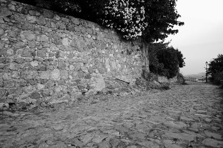 Path Path Alley Architecture Building Exterior Built Structure City Day Direction Footpath Growth Nature No People Outdoors Plant Rock Sky Solid Stone Wall The Way Forward Tree Village Wall Wall - Building Feature