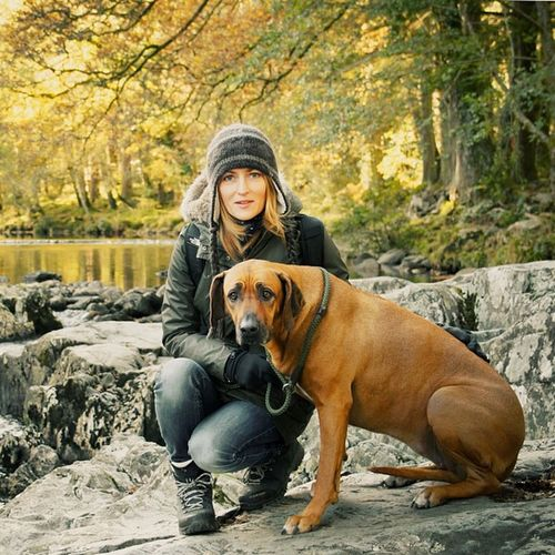 #vmc #lillydog #rhodesian #ridgeback #river #trees #autumn #colours #betws-y-coed #wales Autumn Colours Wales Ridgeback Rhodesian Vmc Lillydog Betws River Trees