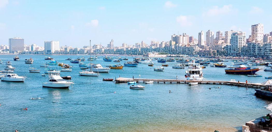 Alexandria city , Egypt City Cityscape Urban Skyline Water Nautical Vessel Skyscraper Harbor Sea Modern Sailing Ship Marina Yacht Boat Water Vehicle Yachting Sailing Port EyeEmNewHere