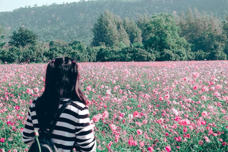 Rear view of woman standing on flowering field