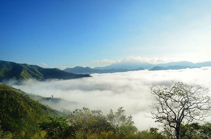 Above the clouds Phmountains Naturephotography Mtbatolusong Seaofclouds Trek Hike Mountains Itsmorefuninthephilippines Pinasmuna Travelphotography Explore Outdoors Bestexperience Nature Clouds Landscape Scenic Cloudscape Clouds