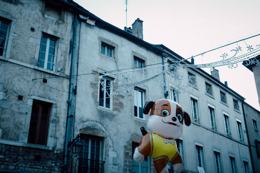 Architecture Balcony Balloon Bizarre Building Exterior Built Structure City Day Dog Fun Funny Inflatable  Looking At Camera Low Angle View No People Outdoors Sky Strange Street Streetphotography Surprising Toy Weird BYOPaper!