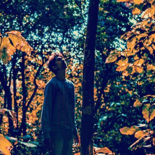 Freedom Sometimes you need to be lost to find yourself. Freedomthinkers Solitude Lost Peace Nature Wanderlust Traveller Trees Soul Ig_naturelovers @nikontop Nikontop Yourshot Natgeocreative Nikon D3200 Free Nagpur Vscocam VSCO Lightroom Inspirelife Halla_photo_contests Ipindia Instagram Visualinspiration india nikond3200