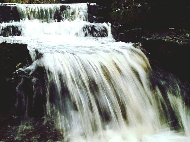 The Arrowe Brook Arrowe Park Arrowe Brook Wirral Merseyside Waterfall