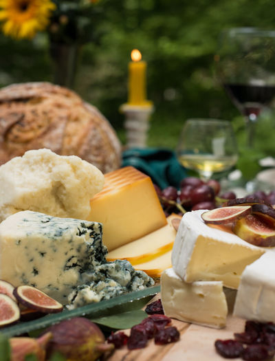 Close-up of cheese against blurred background