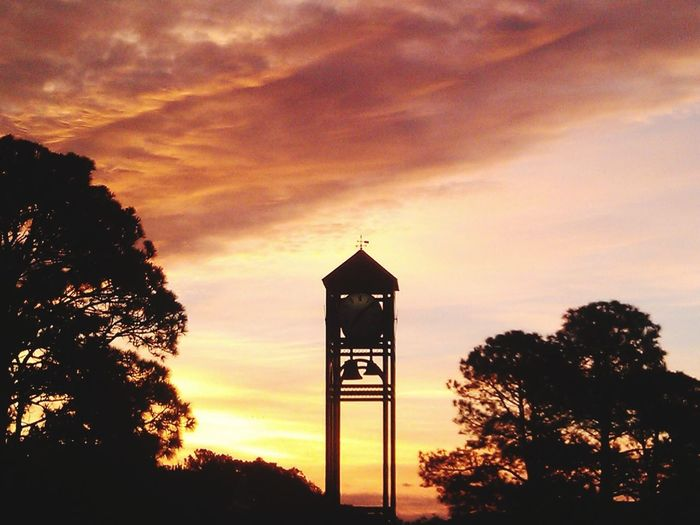 Uncw Sunset Silhouette Dramatic Sky No People Tree Built Structure Cloud - Sky Sky Architecture Outdoors Nature Beauty In Nature Clocktower
