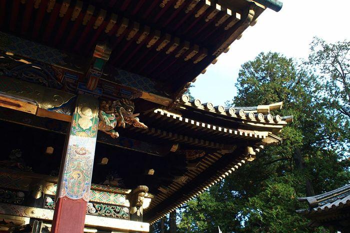 Temple Temples 日光 東照宮 Nikko 神社